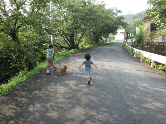子供たちの散歩